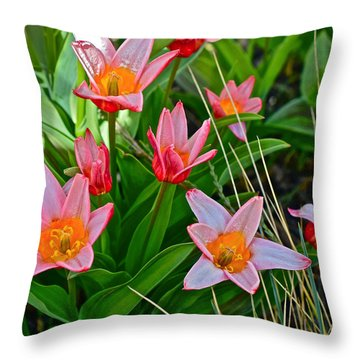 2016 Acewood Tulips 2 Throw Pillow by Janis Nussbaum Senungetuk