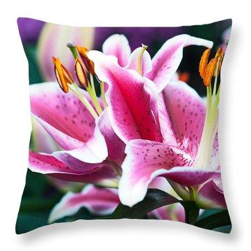 2016 Mcneely 0305-dsc_0652 Throw Pillow