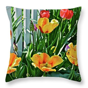 Throw Pillow featuring the photograph 2018 Acewood Tulips Against The White Fence 1 by Janis Nussbaum Senungetuk