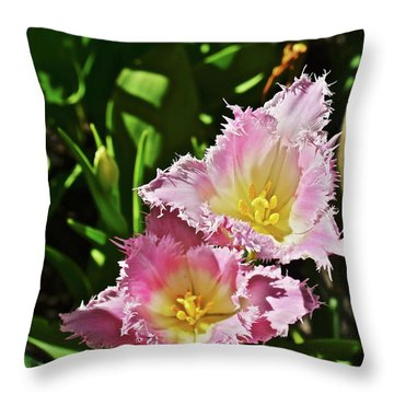 Throw Pillow featuring the photograph 2018 Acewood Tulips Fringed Beauties by Janis Nussbaum Senungetuk