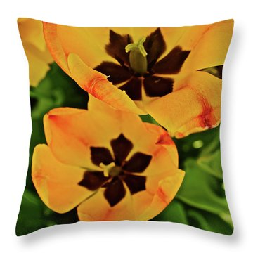 Throw Pillow featuring the photograph 2018 Acewood Tulips Yellow Blooms by Janis Nussbaum Senungetuk