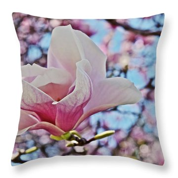 Throw Pillow featuring the photograph 2018 Vernon Magnolias 1 by Janis Nussbaum Senungetuk