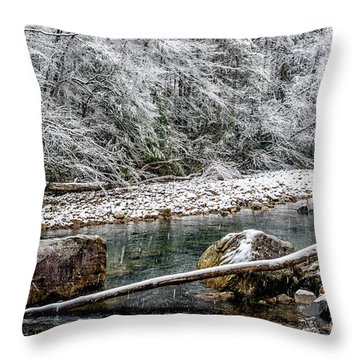 Throw Pillow featuring the photograph Winter Along Cranberry River by Thomas R Fletcher