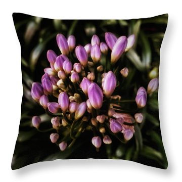 Throw Pillow featuring the photograph Instagram Photo by Mr Photojimsf