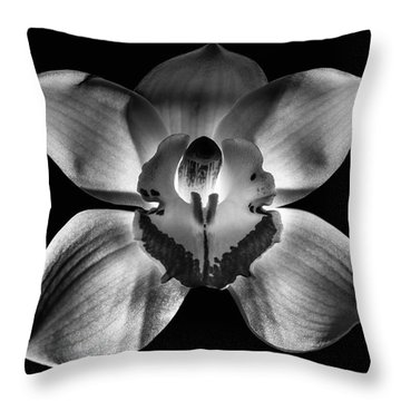 218 Fixed Background Throw Pillow