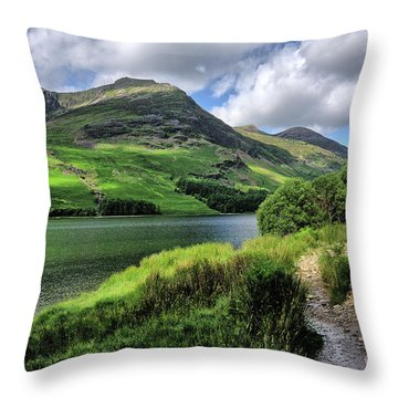 Buttermere Throw Pillow by Nichola Denny