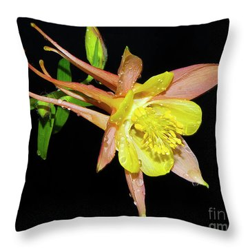 Spring Flower Throw Pillow by Elvira Ladocki