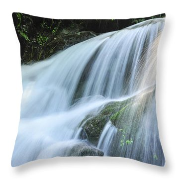 Throw Pillow featuring the photograph Waterfall Scenery by Carl Ning