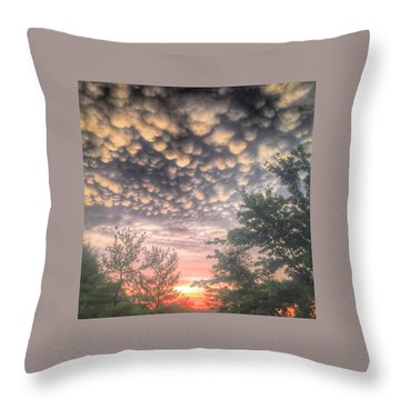 23 June 15 Throw Pillow