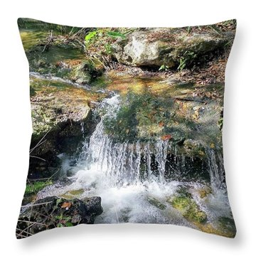 Mini Waterfall Throw Pillow