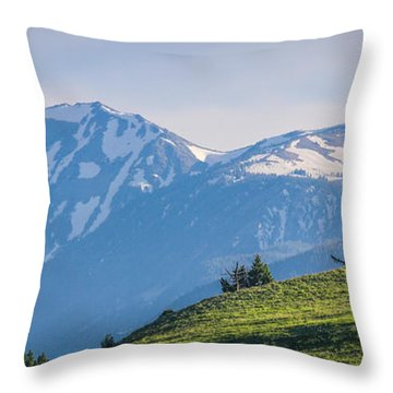#238 - Spanish Peaks, Southwest Montana Throw Pillow