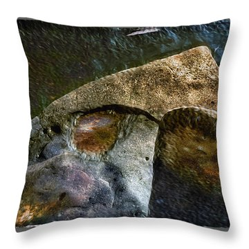 Stone Sharkhead Throw Pillow