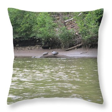 Virginia Scenes Throw Pillow
