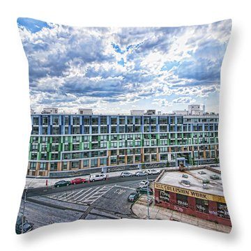 250n10 #1 Throw Pillow by Steve Sahm