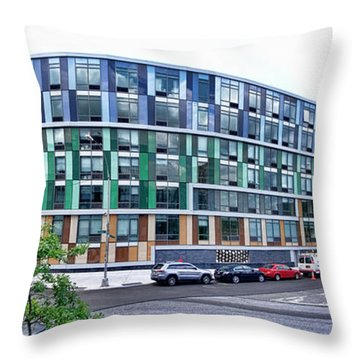 250n10 #2 Throw Pillow by Steve Sahm