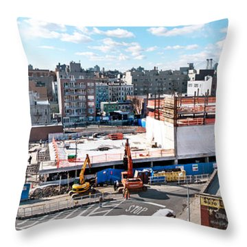 250n10 #5 Throw Pillow by Steve Sahm