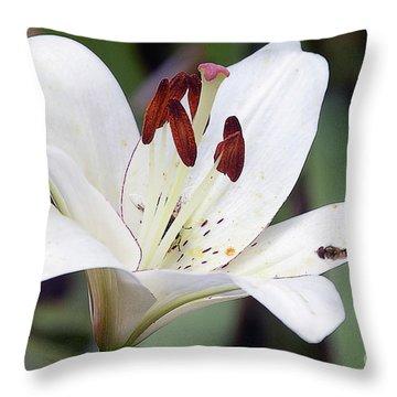 White Lily Throw Pillow by Elvira Ladocki