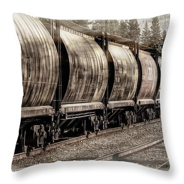 2816 Empress Passing Grain Throw Pillow