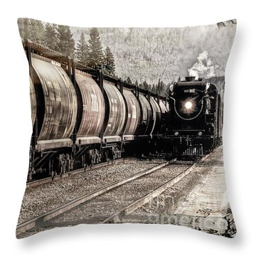 2816 Empress Passing Grain Throw Pillow