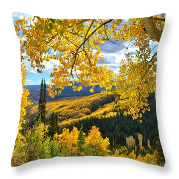 Ohio Pass Fall Colors Throw Pillow