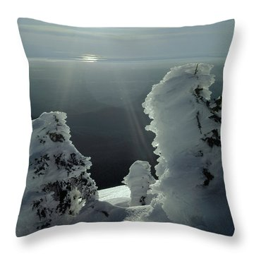 2m4415 A Ice Covered Trees Over Puget Sound Throw Pillow