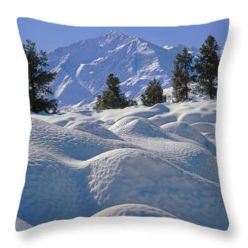 2m6402 Mt. Tom From Sherwin Grade Throw Pillow