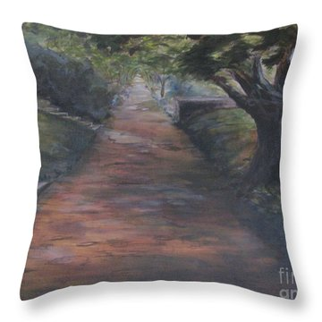 2nd St Sidewalk Throw Pillow