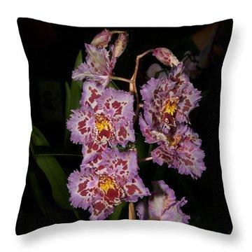Cattleya Style Orchids Throw Pillow