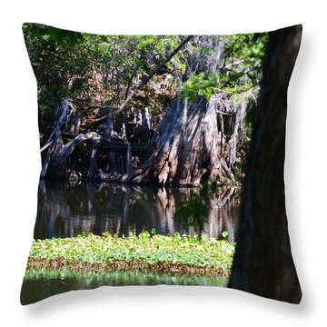 Across The River Throw Pillow by Warren Thompson