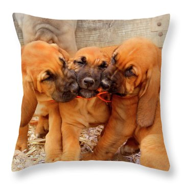 3 Amigo's Throw Pillow
