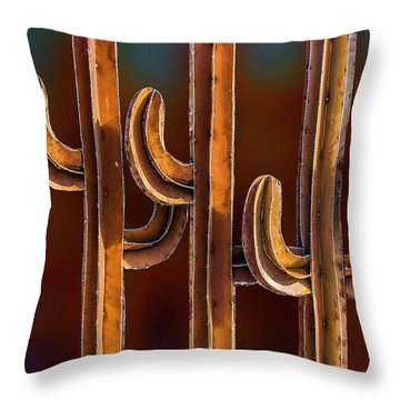 Throw Pillow featuring the photograph 3 Amigos by Paul Wear