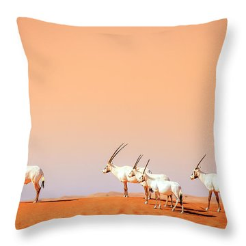 Throw Pillow featuring the photograph Arabian Oryx by Alexey Stiop