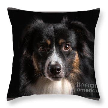 Australian Shepherd Throw Pillow by Verena Matthew