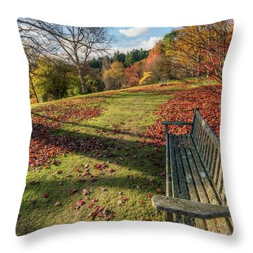 Throw Pillow featuring the photograph Autumn Leaves by Adrian Evans