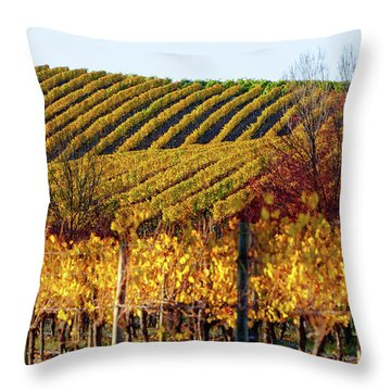 Autumn Vines Throw Pillow by Bill Robinson