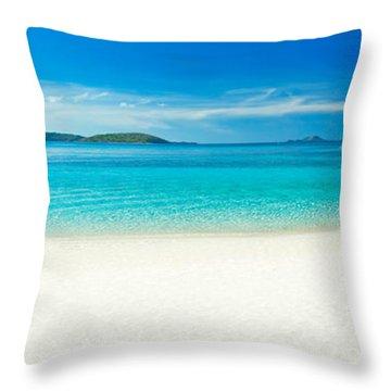 Beach Panorama Throw Pillow