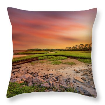 Throw Pillow featuring the photograph Big Talbot Island by Peter Lakomy