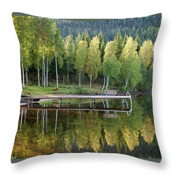 Birches And Reflection Throw Pillow by Aivar Mikko