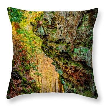 3 Bridges Trail #1 Throw Pillow