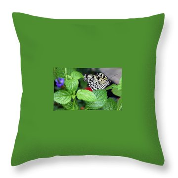 Paper Kite Butterfly No. 3 Throw Pillow by Sandy Taylor