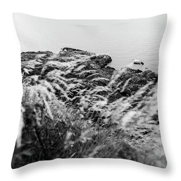 Cliffs At Kullaberg Throw Pillow