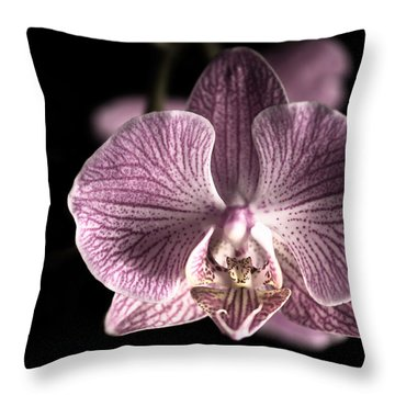 Close Up Shoot Of A Beautiful Orchid Blossom Throw Pillow