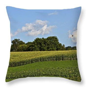 3 Clouds Over Sculptured Field W.bird Throw Pillow