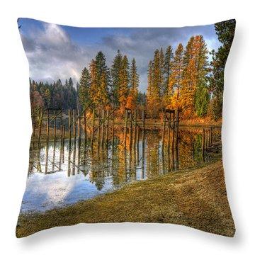 Cocolala Creek Slough Throw Pillow