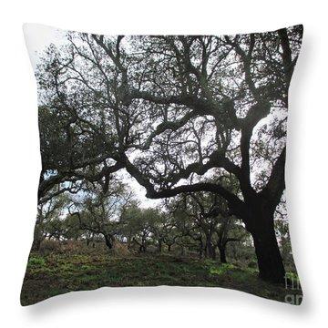 Cork Oaks Throw Pillow