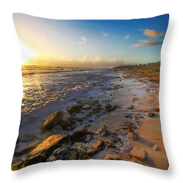 3 Degrees Below The Sun Throw Pillow