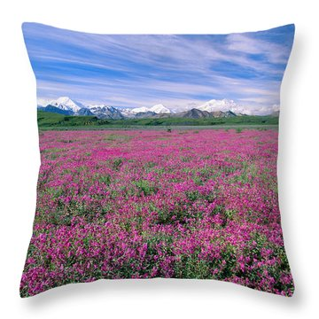 Denali National Park Throw Pillow by John Hyde - Printscapes