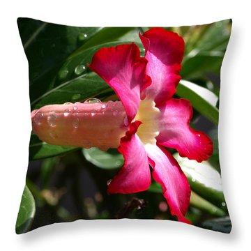 Desert Rose Throw Pillow by Allan  Hughes