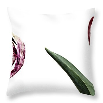 Fading Beauty Throw Pillow