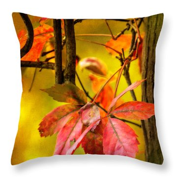 Fall Colors Throw Pillow by Eduard Moldoveanu